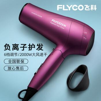 FLYCO FH 6618ドライヤー家庭用大出力ドライヤヘアーサロンマイナー冷熱ドライヤー2000 W FH 6618標準装備